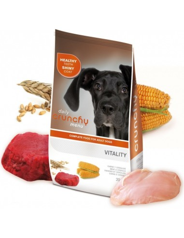 Croquettes Chien Crunchy Diary Vitality